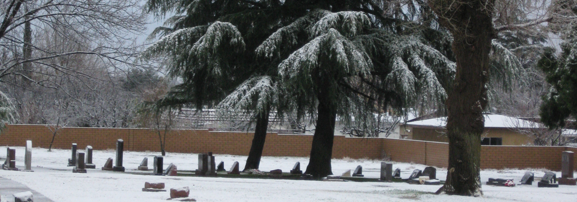 Picture of Snow Fall on Grave Markers and Tree at Mountain View Cemetery.
